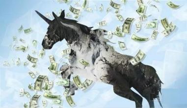 市值40亿独角兽公司